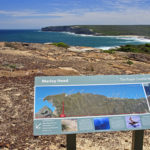Trek the popular Royal National Park Coastal Walk with Google